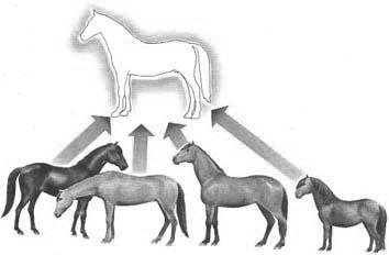 teoria-das-ideias